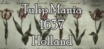 Tulip Mania, 17th century Holland – The First Financial Bubble in History